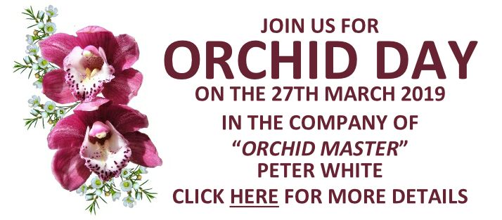 Orchid Day 2019
