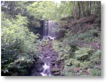 A waterfall on the country walk at The Welsh Botanical Gardens