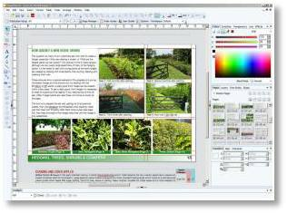 Buckingham Nurseries catalogue in production