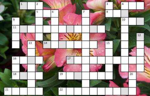 Buckingham Garden Centre's June/July crossword