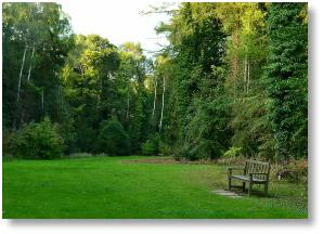 Evenley Wood Garden, a lovely venue to visit close to Buckingham Garden Centre