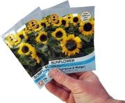 Grow a sunflower from seed - Buckingham Garden Centre's Junior Gardening Club Sunflower Competition