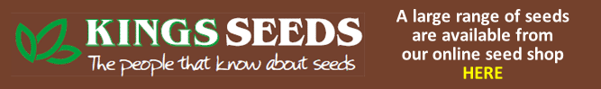 Kings Seeds available in store and online at Buckingham Garden Centre