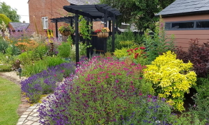 Get inspirations from local gardens