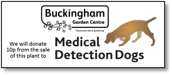 Look out for this sticker at Buckingham Garden Centre - we will donate 10p from every plant sold with this sticker on to the MediDog charity