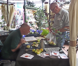 Gerry Edwards identifying apples ate Buckingham Gadren Centre's Apple Weekend