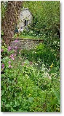 Nature in your garden
