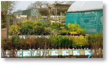New bench displays at Buckingham Garden Centre