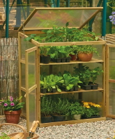 Mini wooden greenhouses available from Buckingham Garden Centre