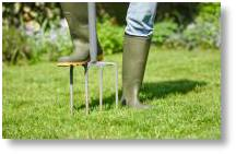 Aerate your lawns this autumn