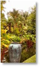 A Tropical Paradise - Botanic Gardens in Chalong