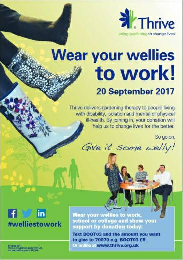 """Wear Your Wellies To Work"" day"