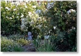 Enjoy your garden at twilight
