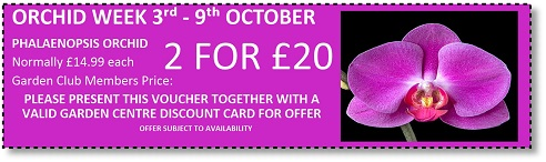 Orchid Week offers at Buckingham Garden Centre