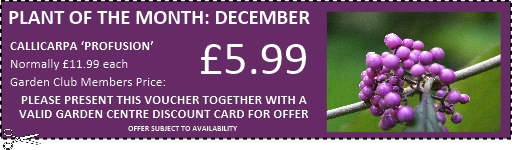 Buckingham Garden Centre Garden Club exclusive voucher