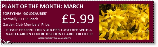 Buckingham Garden Centre - Garden Club Member vouchers
