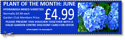 May/June 2016 Voucher 4