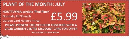 Garden Card offers at Buckingham Garden Centre