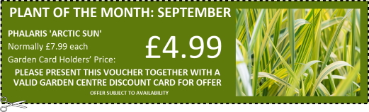 Special offers at Buckingham Garden Centre