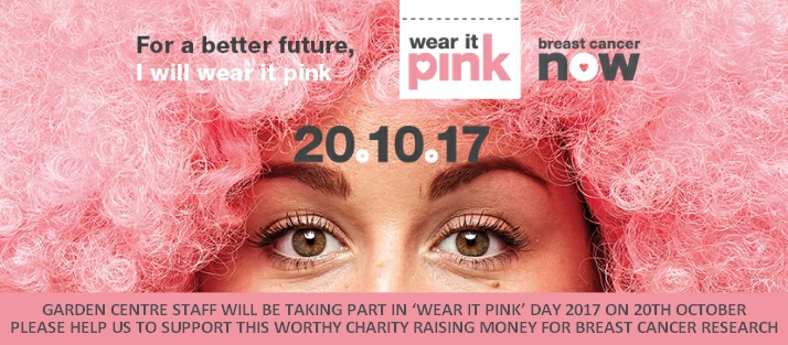 Wear it Pink 2017 Buckingham Garden Centre