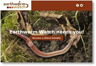Take part in the Earthworm watch survey