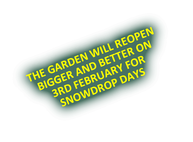 THE GARDEN WILL REOPEN  BIGGER AND BETTER ON 3RD FEBRUARY FOR SNOWDROP DAYS
