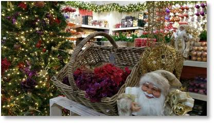 Christmas gift ideas from Buckingham Garden Centre