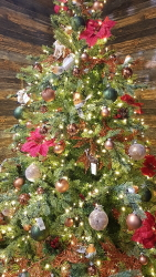 Christmas trees and decorations available to buy from Buckingham Garden Centre