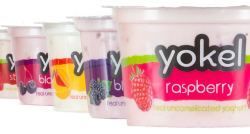 Yokel Yoghurt available at Buckingham Garden Centre